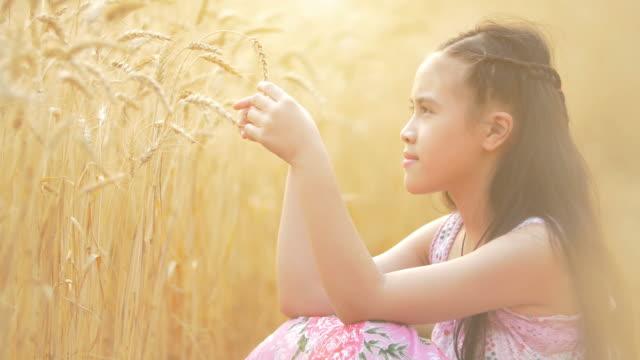 Little girl in the wheat field video