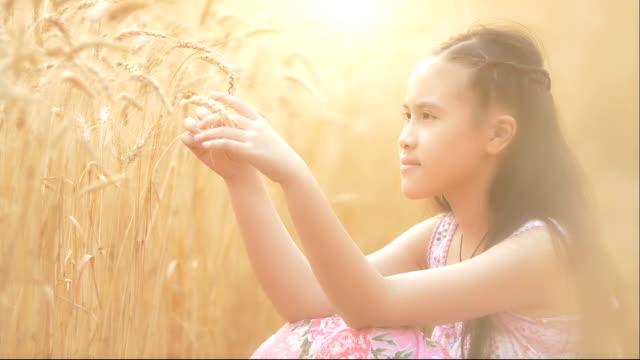Little girl in Wheat field. video