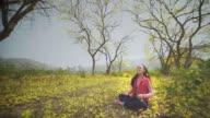 Little Girl in yellow Flowers field video