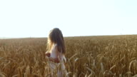A little girl moves along the wheat fields. Girl's hand touches the wheat spikelets. Wheat turned yellow. video