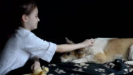 Little girl petting the dog and offering a toy video