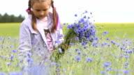 Little girl picking flowers video