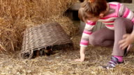 little girl play with puppy pet video