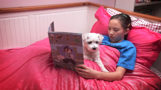Little girl reading bedtime story to pet video