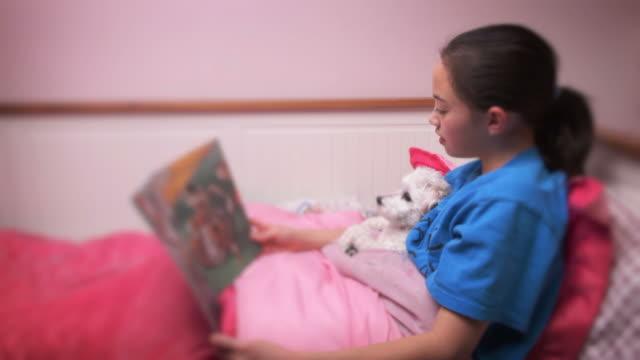 Little girl reading bedtime story to pet video