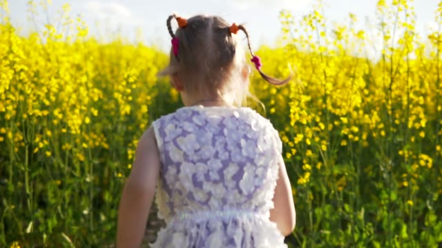 Little girl running in a rapeseed field video