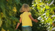 Little girl running through tall plants video