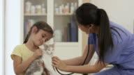 Little Girl Taking Her Cat to the Vet video