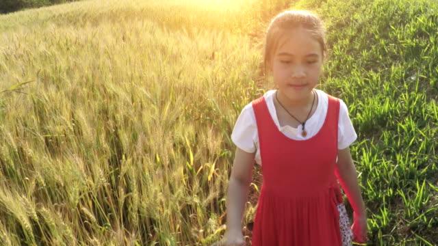 Little girl walking in Wheat video