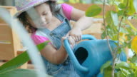 Little girl watering potted plant in garden \\ Concept : taking care of nature video