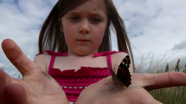Little girl with butterfly video
