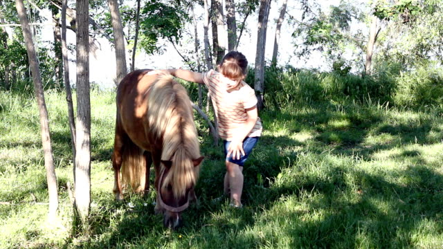 little girl with pony horse video
