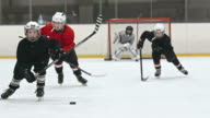 Little Hockey Heroes video