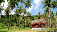 Little house amongst palms on the Koh-Chang island, Thailand video