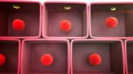 liver, liver cells video