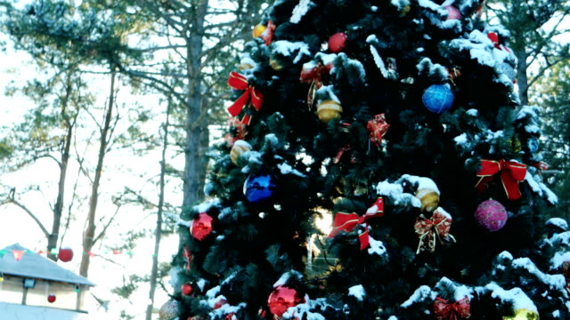 living Christmas tree decorated with Christmas balls, toys and garlands, stands in the open air video