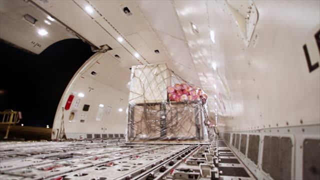 Loading cargo inside airplane cargo hold video