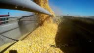 Loading Corn Grain in Slow Motion video