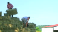 Loading Hay video