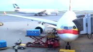 Loading platform of air freight to the aircraft video