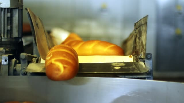 Loaf of bread on conveyor belt. Production line at bread plant Bread factory video