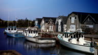 Lobster and Fishing Boats in Prince Edward Island Harbour video