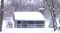 Log Cabin in Snow (Additional_Formats_Below) video