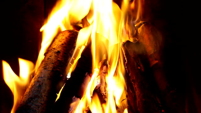 Log fire in a fireplace - HD 1080p video
