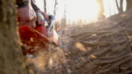 SLO MO Logger bucking a tree video