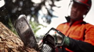 SLO MO Logger cutting into tree with chainsaw video