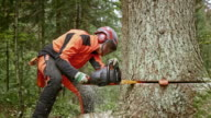 SLO MO Logger starting a chainsaw and cutting the tree video