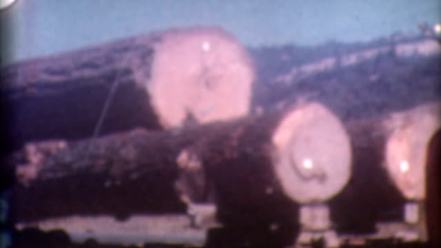 Logging Timber 1950's video