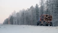 Logging truck with full load of timber drives on winter dirt road on background of snowy forest video
