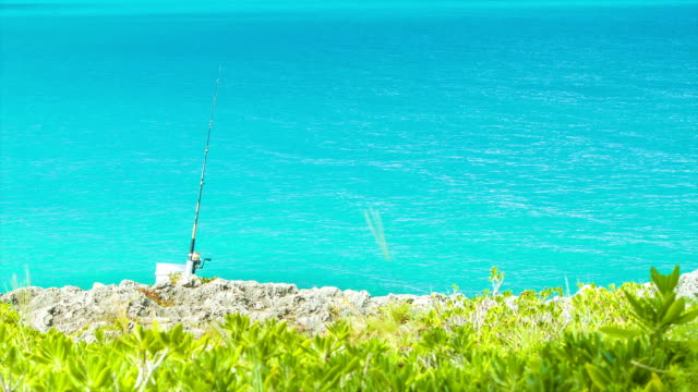 Lone Fishing Rod into Tropical Water on Sunny Day video