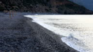 HD: Lonely beach in Sougia, Crete island, Greece video