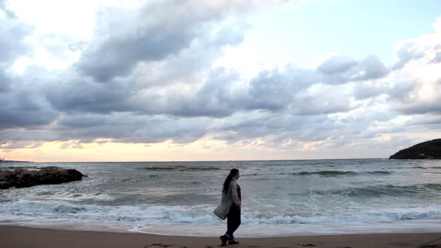 Lonely girl walking, empty beach video