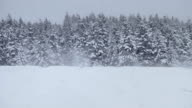 Lonely Man Snowmobiling in The Powder Snow video
