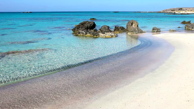 HD: Lonely sandy beach video
