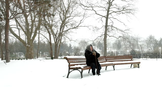 Lonely Senior Woman In Snowy Park video