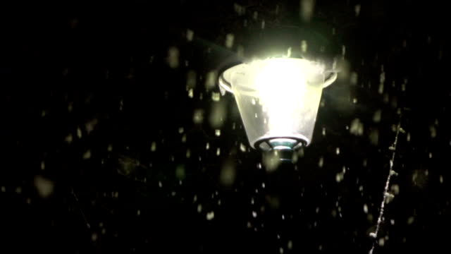 CLOSE UP: Lonely street lamp illuminating park during heavy snowfall by night video