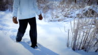 Lonely Woman Snowshoeing in nature video