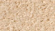 Long Grain Rice video