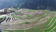 Longji Terraced Fields in Longsheng,Guilin,China video