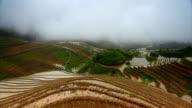 Longji Terraced Fields video