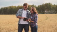 Looking at Harvest video