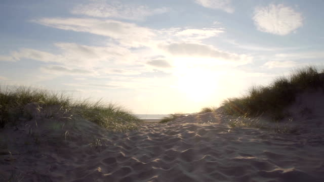 Looking At Sandy Beach From Sand Dunes video