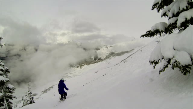 Looking into the Alaskan Winter Wilderness with Deep Powder and Epic Clouds creating Snow high in the Mountains video