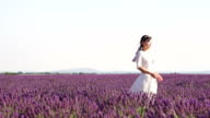 looking to the future in lavender field video