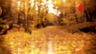 Loop autumn tree leaves falling down in a park video
