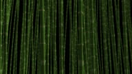 Loopable Bamboo Forest in Wind video